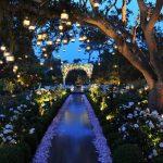 Light design: i consigli per illuminare il vostro giorno speciale